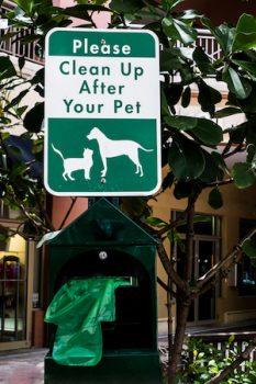 clean up poop