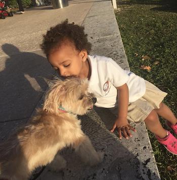 owning dog life changing